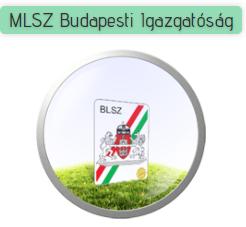 MLSZ Budapesti Igazgatóság